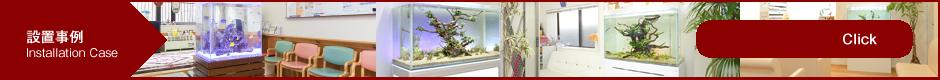 レンタルアクアリウム、熱帯魚水槽レンタルの、メンテナンス、はTOJOグループ長崎・福岡:アクアリウムのプロフェッショナル、TOJOファミリ―【アクアプランニング】