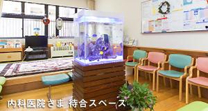 人の集まる場所に!安心の海水魚レンタルサービスを提供中