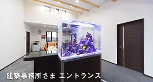 水槽のリニューアル・メンテナンス